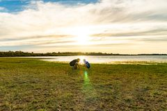 Garçon et fille au bord de mer photographie stock libre de droits