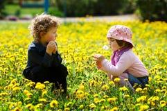 Garçon et fille dans le domaine de fleurs d'été Photographie stock