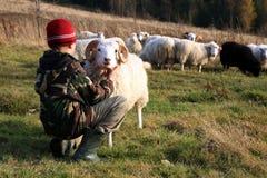 Garçon et moutons Photographie stock