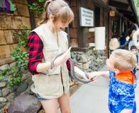 Garçon et serpent - zoo de Comté d'Orange - orange, CA Photos libres de droits