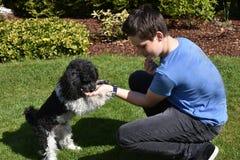 Garçon et son petit chien Photos stock