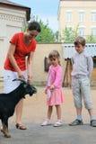 Garçon, fille et mère, chèvre de montagne d'alimentation Images libres de droits