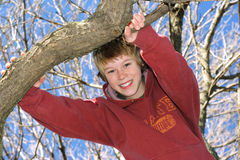 Garçon grimpant à un arbre Photos libres de droits