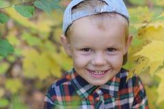Garçon heureux dans la forêt d'automne Photo stock
