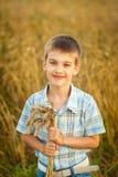 Garçon heureux dans le domaine de blé d'automne Images stock