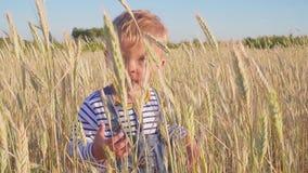 Garçon heureux de deux ans se tenant sur le champ et les vagues sa main Concept Petit agriculteur banque de vidéos