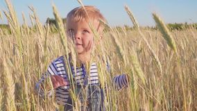 Garçon heureux de deux ans se tenant sur le champ et les vagues sa main Mouvement lent Concept Petit agriculteur banque de vidéos