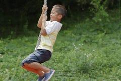 Garçon japonais jouant avec le renard de vol Photos stock