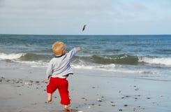 Garçon jouant à la plage Photographie stock libre de droits