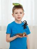 Garçon jouant avec des jouets de dinosaure Photo libre de droits