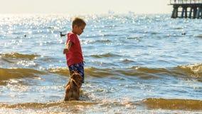 Garçon jouant avec son crabot Photographie stock