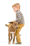 Garçon jouant avec un chiot Image libre de droits