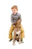 Garçon jouant avec un pitbull de chiot Images stock
