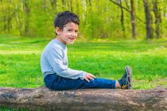 Garçon joyeux reposant sur un identifiez-vous les bois photo libre de droits