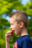 Garçon mangeant la fraise Photos libres de droits