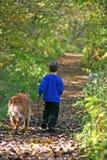 Garçon marchant avec le crabot Images stock