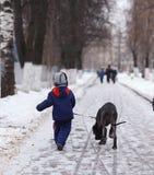 Garçon marchant avec un grand chien en parc d'hiver Photographie stock