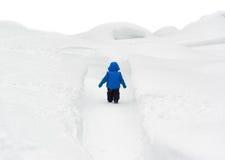 Garçon marchant par le chemin de Milou Photo libre de droits