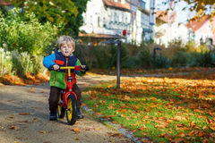 Garçon mignon d'enfant en bas âge de deux ans montant le vélo en parc de ville d'automne Image stock