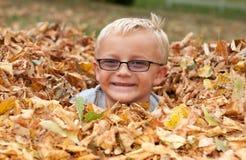 Garçon mignon dans des lames d'automne Photographie stock libre de droits