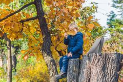 Garçon mignon de petit enfant appréciant le jour d'automne Enfant préscolaire dans le colo Photos libres de droits
