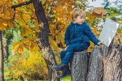 Garçon mignon de petit enfant appréciant le jour d'automne Enfant préscolaire dans le colo Images libres de droits