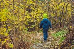 Garçon mignon de petit enfant appréciant le jour d'automne Enfant préscolaire dans le colo Photo libre de droits