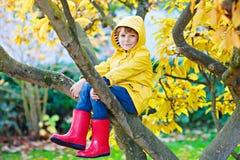 Garçon mignon de petit enfant appréciant s'élever sur l'arbre le jour d'automne Enfant préscolaire dans des vêtements automnaux c image libre de droits