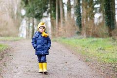 Garçon mignon de petit enfant marchant par la forêt d'automne Photographie stock