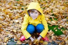 Garçon mignon heureux de petit enfant avec des feuilles d'automne jouant dans le jardin photographie stock libre de droits