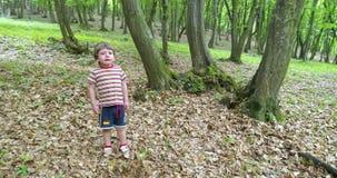 Garçon mignon pleurant dans la forêt banque de vidéos