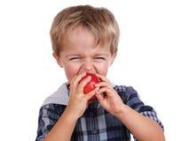 Garçon mordant une pomme rouge Photos libres de droits