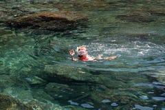 Garçon naviguant au schnorchel dans un bassin naturel à Lanzarote Photo libre de droits