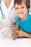 Garçon obtenant son chaton à la vaccination Photo libre de droits
