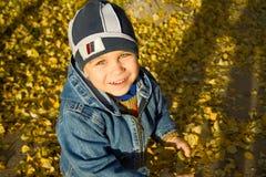 Garçon parmi des lames d'automne Photos stock