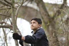 Garçon parmi les arbres Photographie stock libre de droits