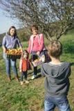 Garçon prenant la photo à la famille avec des pommes dans le panier Photographie stock libre de droits