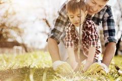Garçon sérieux aidant son papa à planter peu d'arbre Photographie stock
