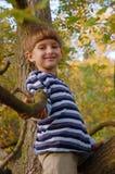 Garçon s'asseyant sur l'arbre Photographie stock