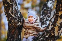 Garçon s'asseyant sur un arbre Images libres de droits