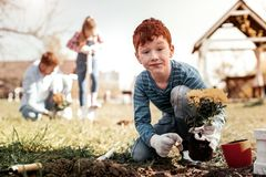 Garçon se demandant avec des taches de rousseur étonnantes parce que plantant la première fois seul images stock