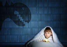 Garçon sous les couvertures avec une lampe-torche photographie stock libre de droits