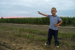 Garçon sur le maïs de champ le soir image stock