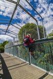 Garçon sur le pont au-dessus de la ligne ferroviaire Photo stock