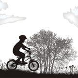 Garçon sur une bicyclette Illustration Libre de Droits