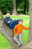 Garçons dans un arbre Images stock