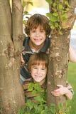Garçons dans un arbre Image libre de droits