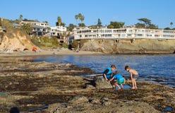 Garçons explorant la piscine de marée dans le Laguna Beach, la Californie Image stock