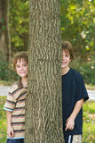 Garçons jetant un coup d'oeil autour d'un arbre Photo stock