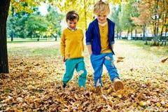 Garçons jouant avec des feuilles en parc Photo libre de droits